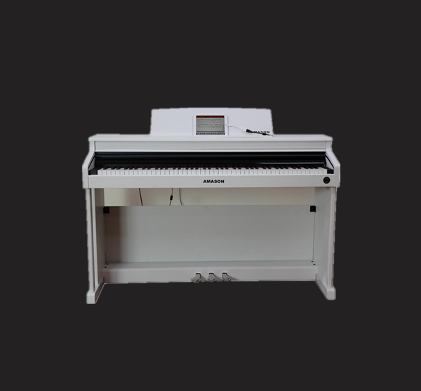 珠江艾茉森 IQ-100