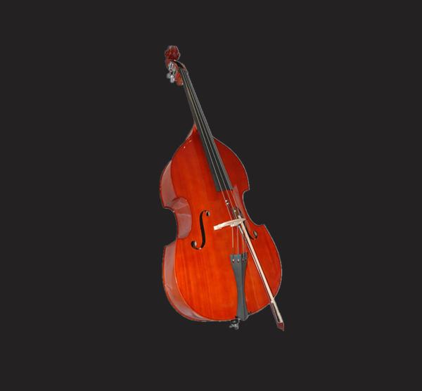 金雀低音大贝司